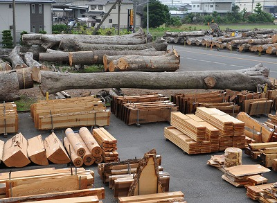 precious_wood_02